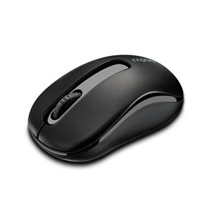 RAPOO Wireless Mouse - M10