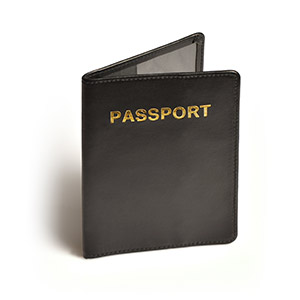 Travel Accessories-Travel Blue RFID Passport Protector