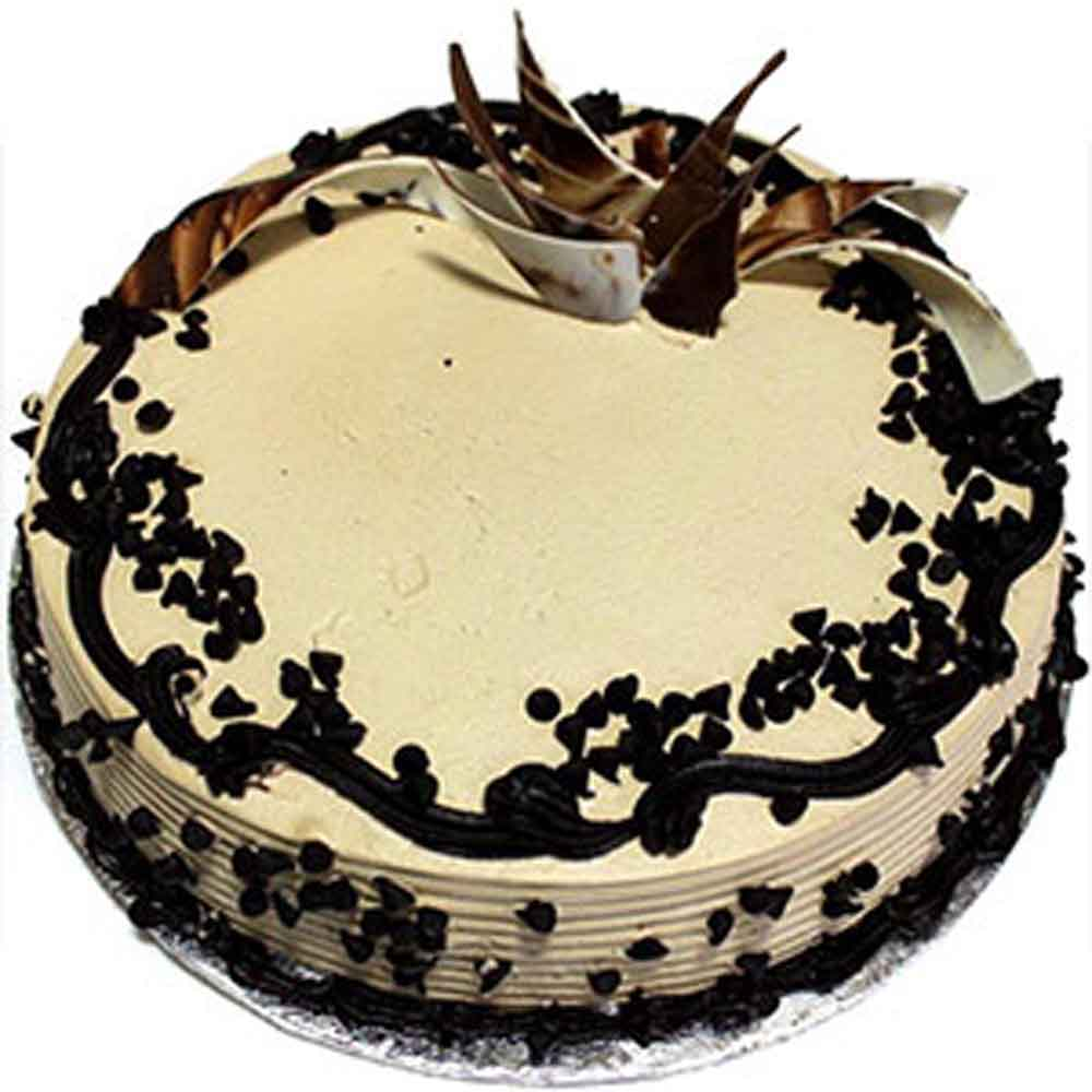 Choco Chips Cake - Rajkot Special