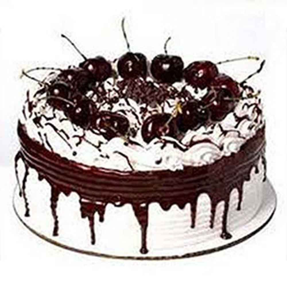 Choco Forest Cake
