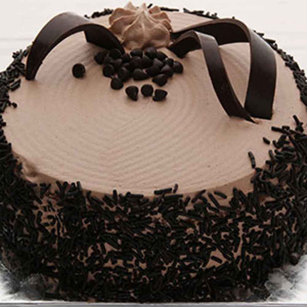 Classic Choco Chip Cake - Chennai Special