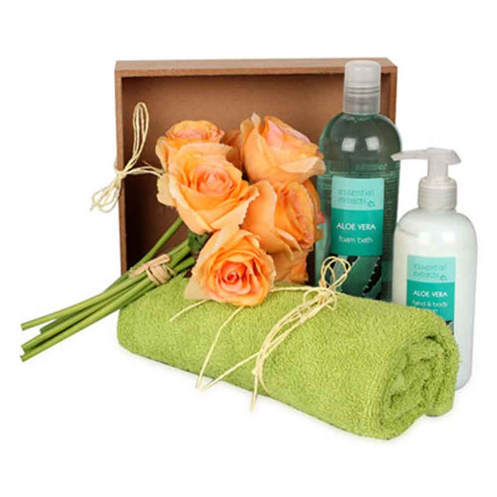 Beauty & Spa Hampers-Mothers Day Aloe Magic For Everyone