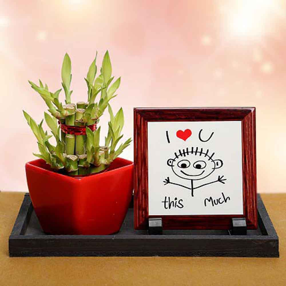 Mothers Day Love Decor & Lucky Bamboo - Valentine