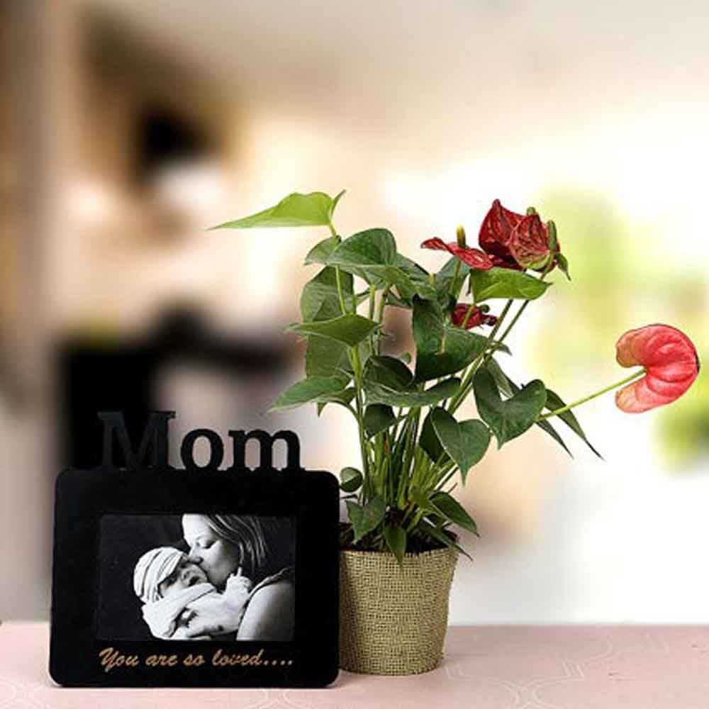 Mothers Day A Token Of Love