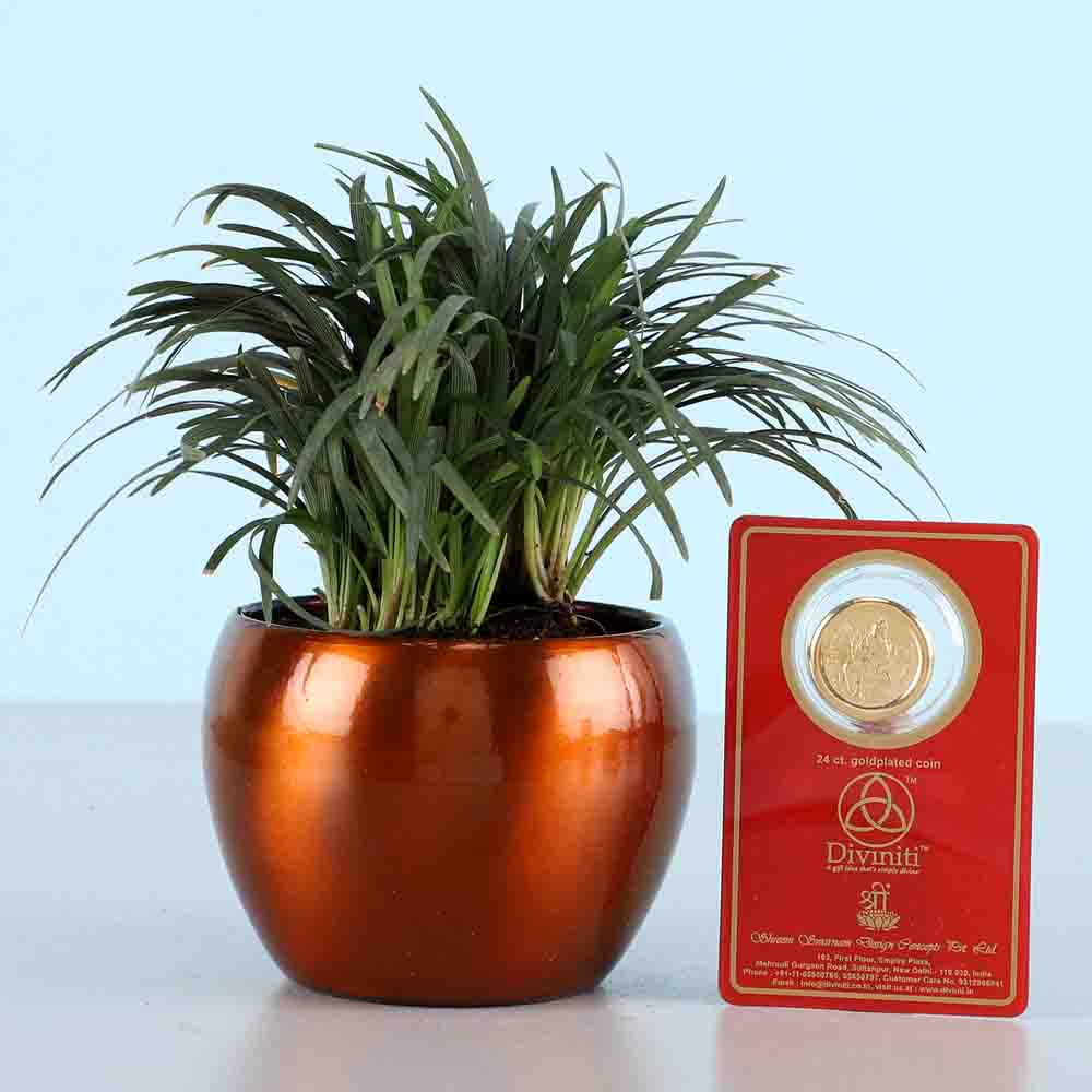 China Grass & Gold Plated Coin
