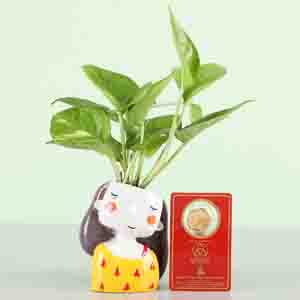 Diwali Hampers-Free Gold Plated Coin With Money Plant