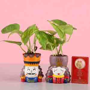 Diwali Hampers-Money Plant Set & Gold Plated Coin
