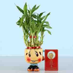 Diwali Hampers-Free Gold Plated Coin With Lucky Bamboo