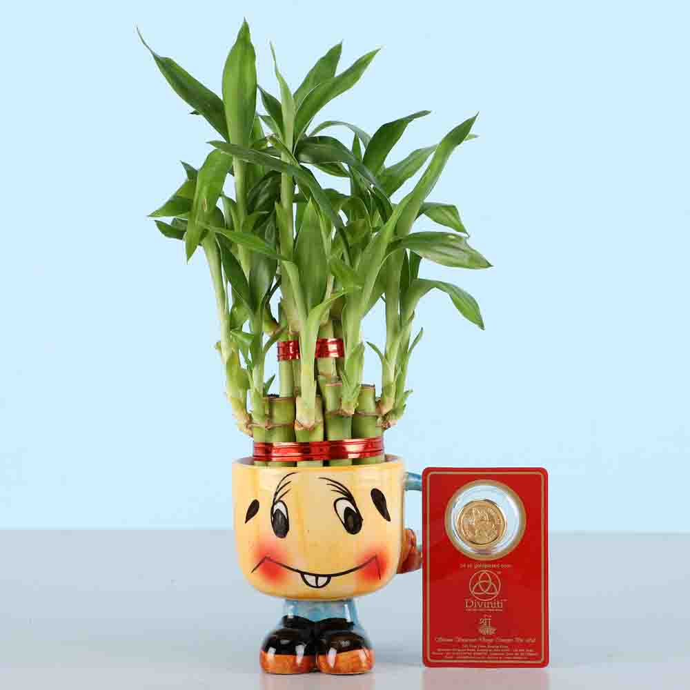 Free Gold Plated Coin With Lucky Bamboo