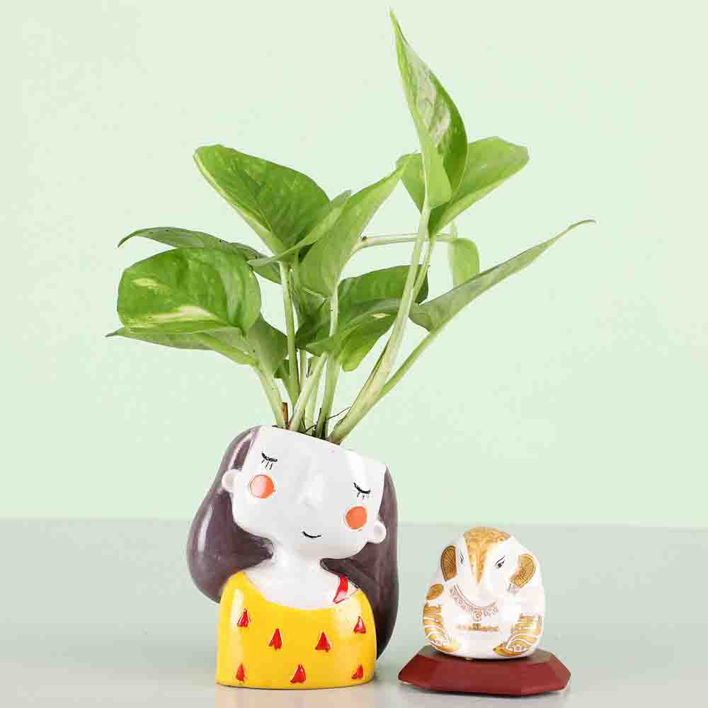 White Ganesha Idol & Money Plant
