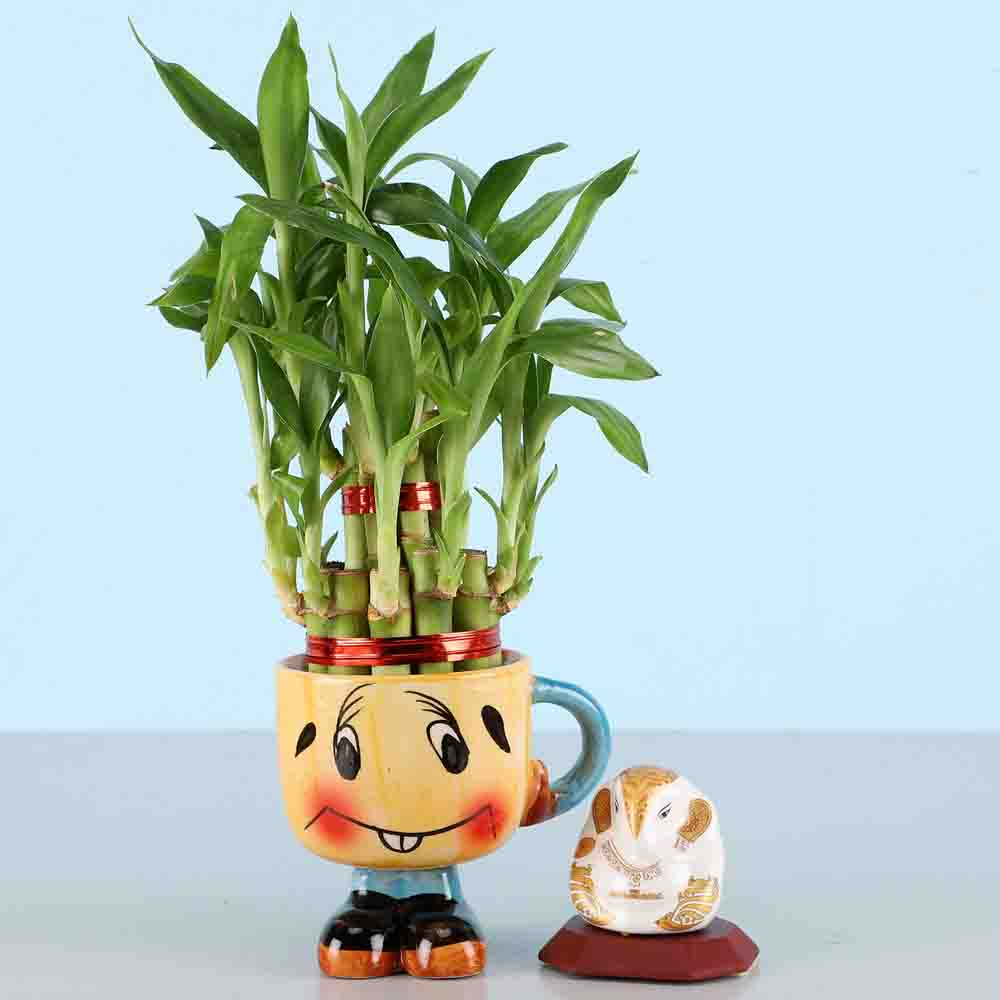 White Ganesha Idol & 2 Layer Lucky Bamboo Plant