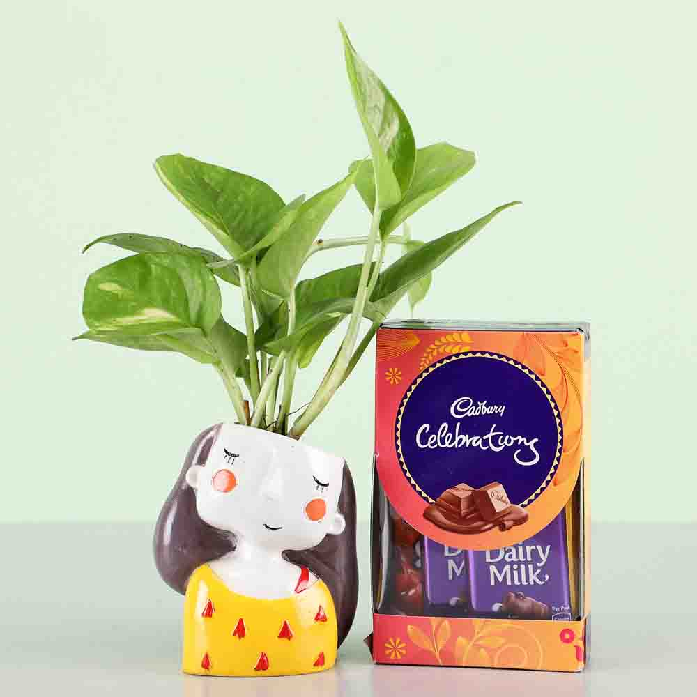 Cadbury Celebrations & Money Plant