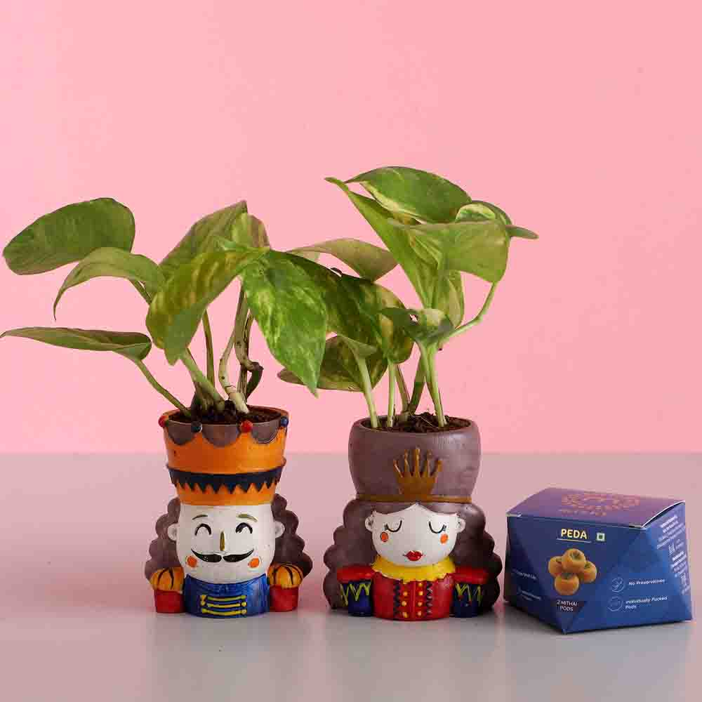 Money Plant Set & Peda Sweet