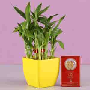 Diwali Hampers-2 Layer Bamboo With Free Gold Plated Coin