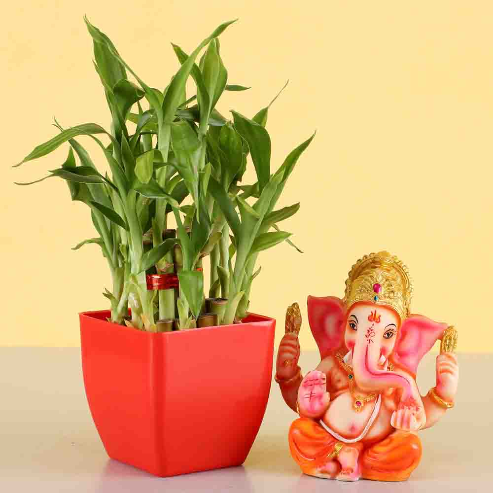 2 Layer Lucky Bamboo With Ganesha Idol