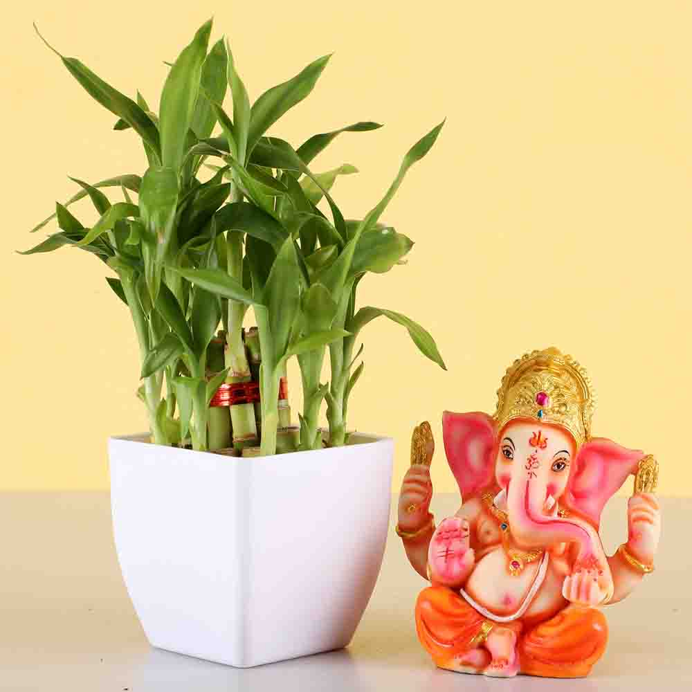 Two Layer Lucky Bamboo With Ganesha Idol