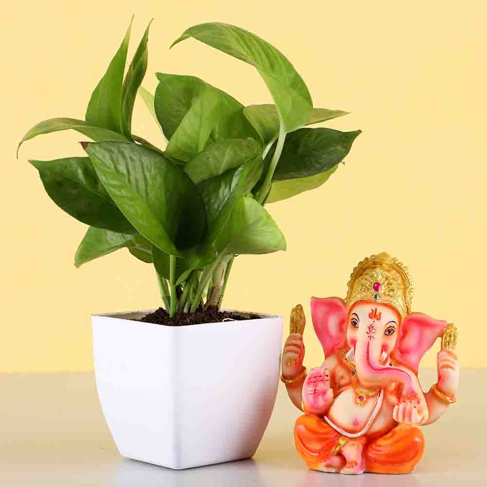 Money Plant & Ganesha Idol
