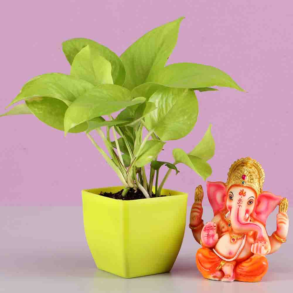 Golden Money Plant & Lord Ganesha Idol