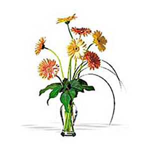 Vase Arrangements-Blush Gerberas