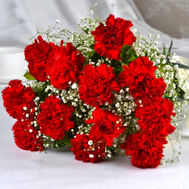 Bouquet of Dozen Red Carnations