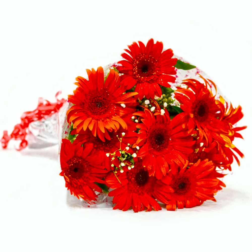 Bunch of Ten Red Gerberas