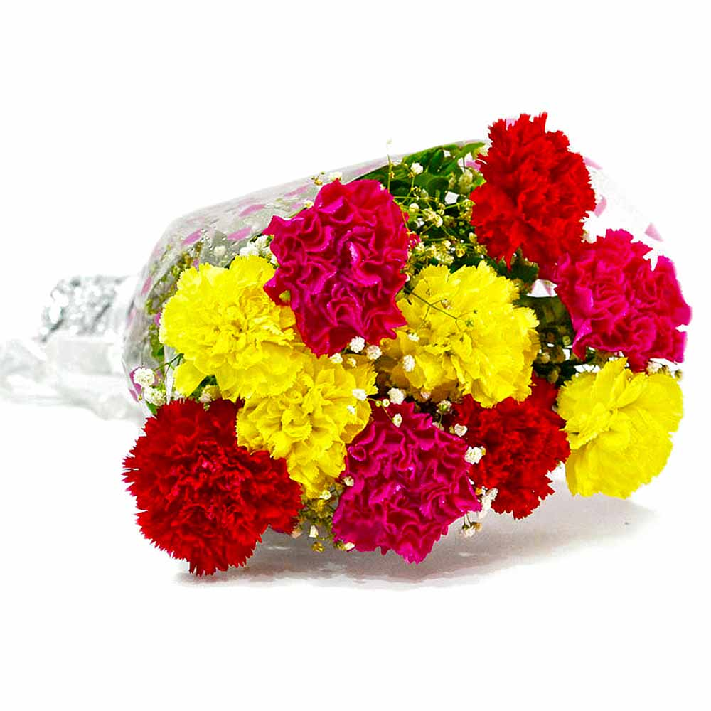 Bouquet of Ten Colorful Carnations