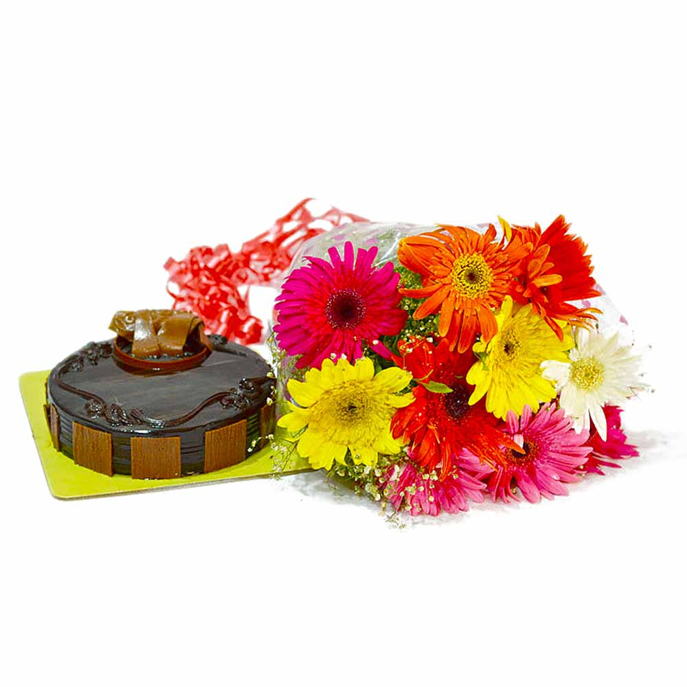 Birthday Combo of Mix Gerberas with Chocolate Cake