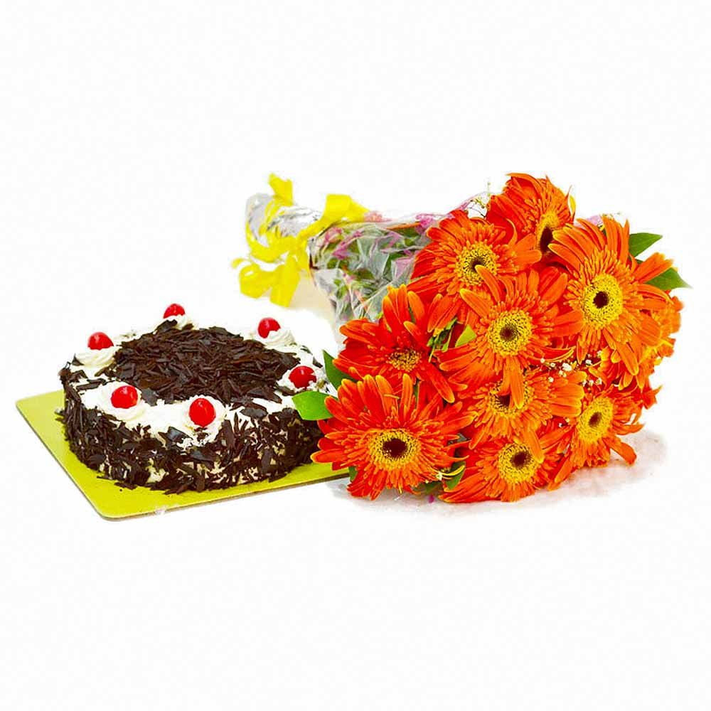 Ten Orange Gerberas Bunch with Black Forest Cake