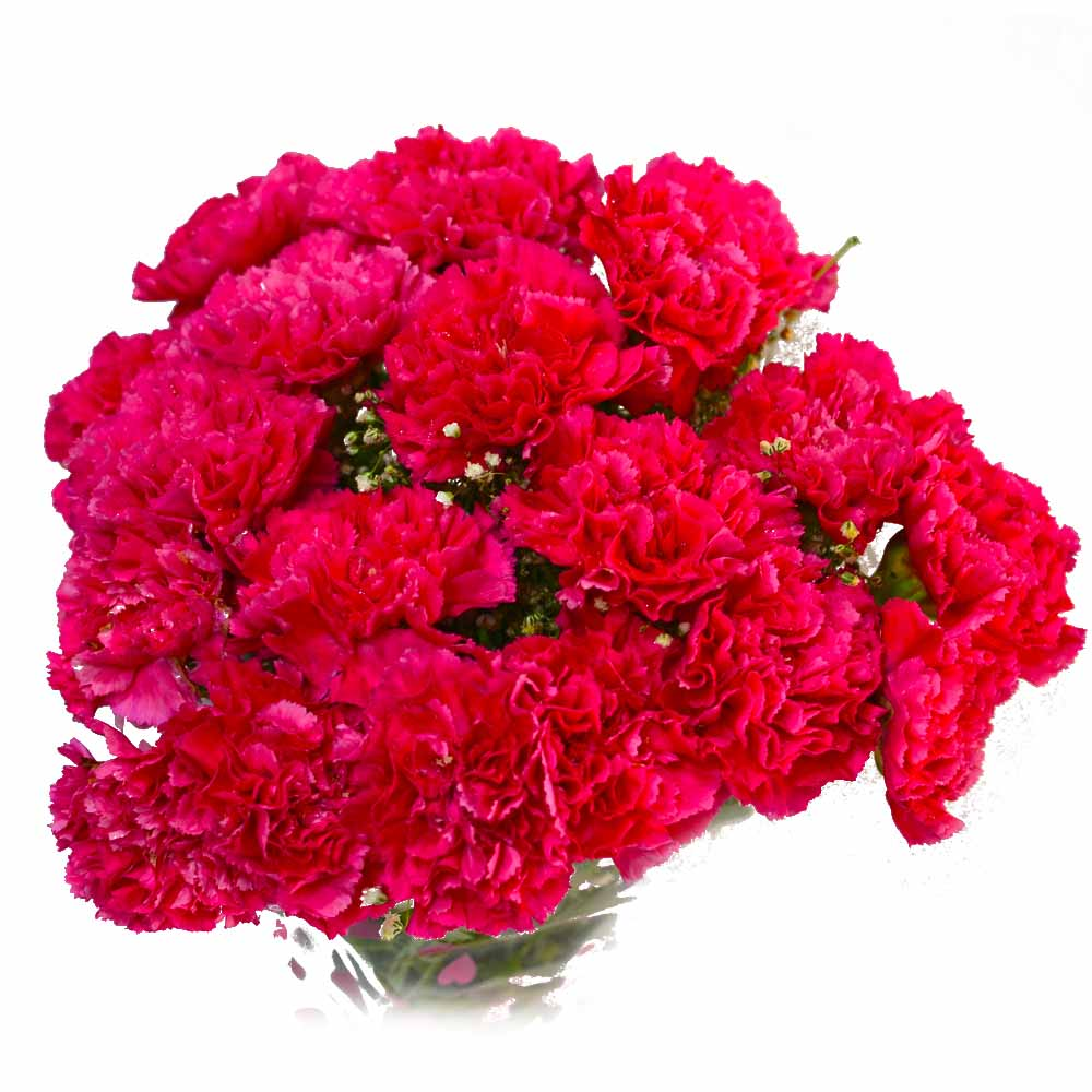 Carnations-Reminder of Love Bouquet !