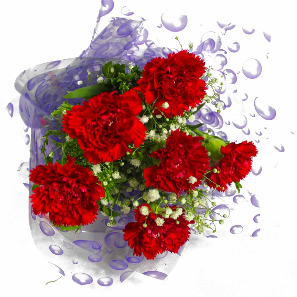 Six Red Carnations Bunch