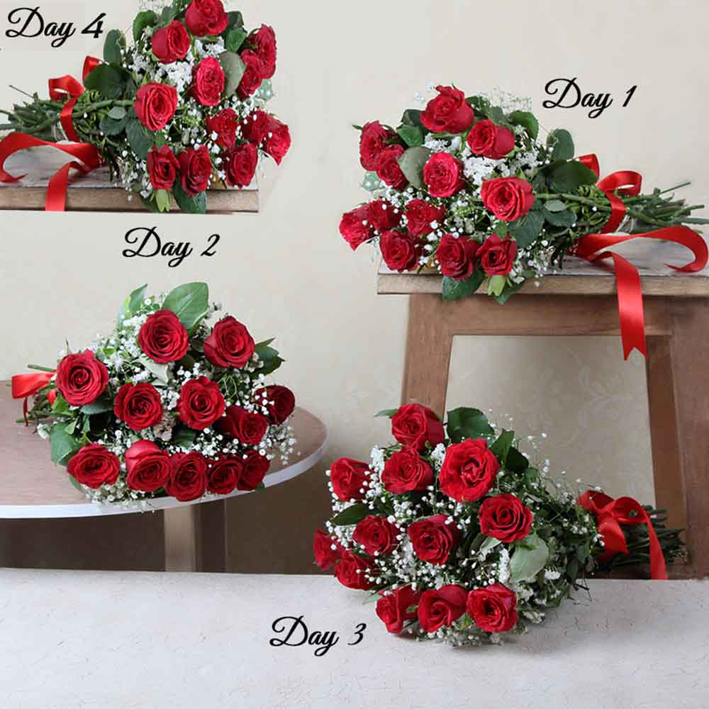 Red Roses-Four Days Delivery of Fresh Red Roses