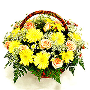 Flower Baskets-Every Day