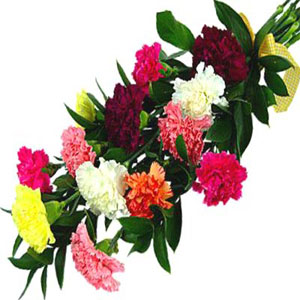 Rainbow Carnations Bouquet