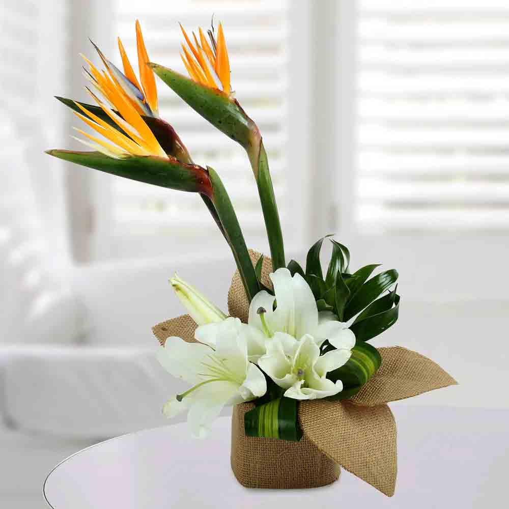 Asiatic Lily Arrangement
