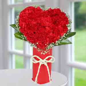 Designer Arrangements-Red Carnation Heart Arrangement