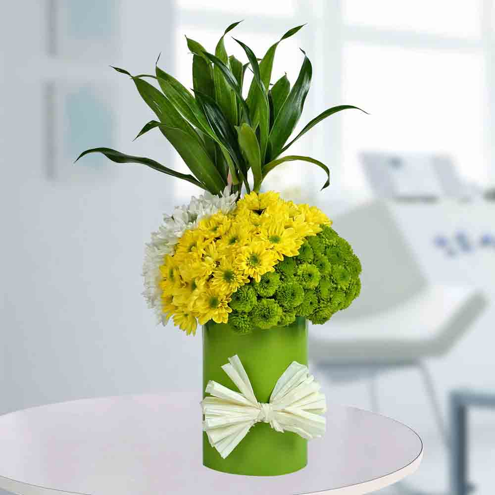 Daisies Arrangement