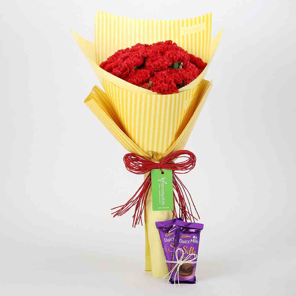 View 20 Carnations Bouquet & Dairy Milk Silk Combo