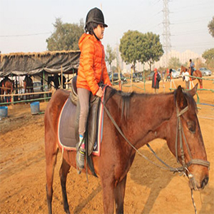 Adventure & Indulgence-Horse Riding For Kids