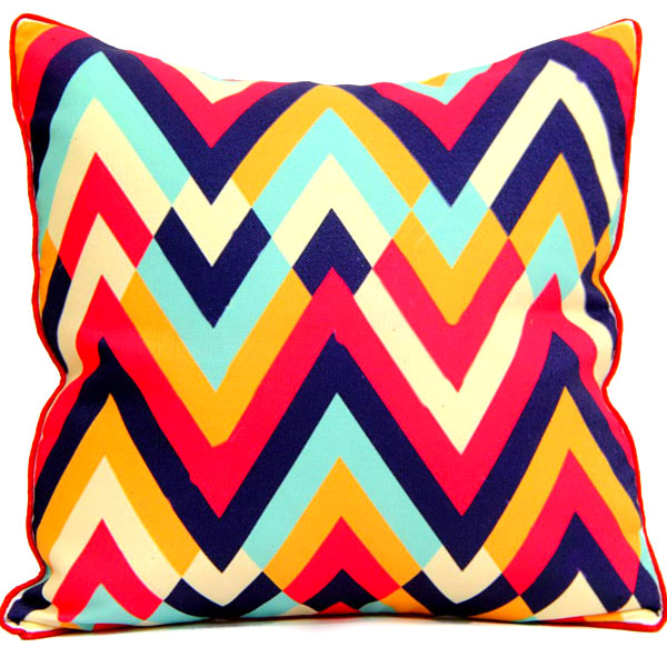 Pillow & Cushion Cover-Printed Cushion