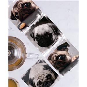 Set of 4 Coasters in Pugs in different moods