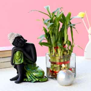 Plants-Relaxing Buddha & Bamboo Plant Combo