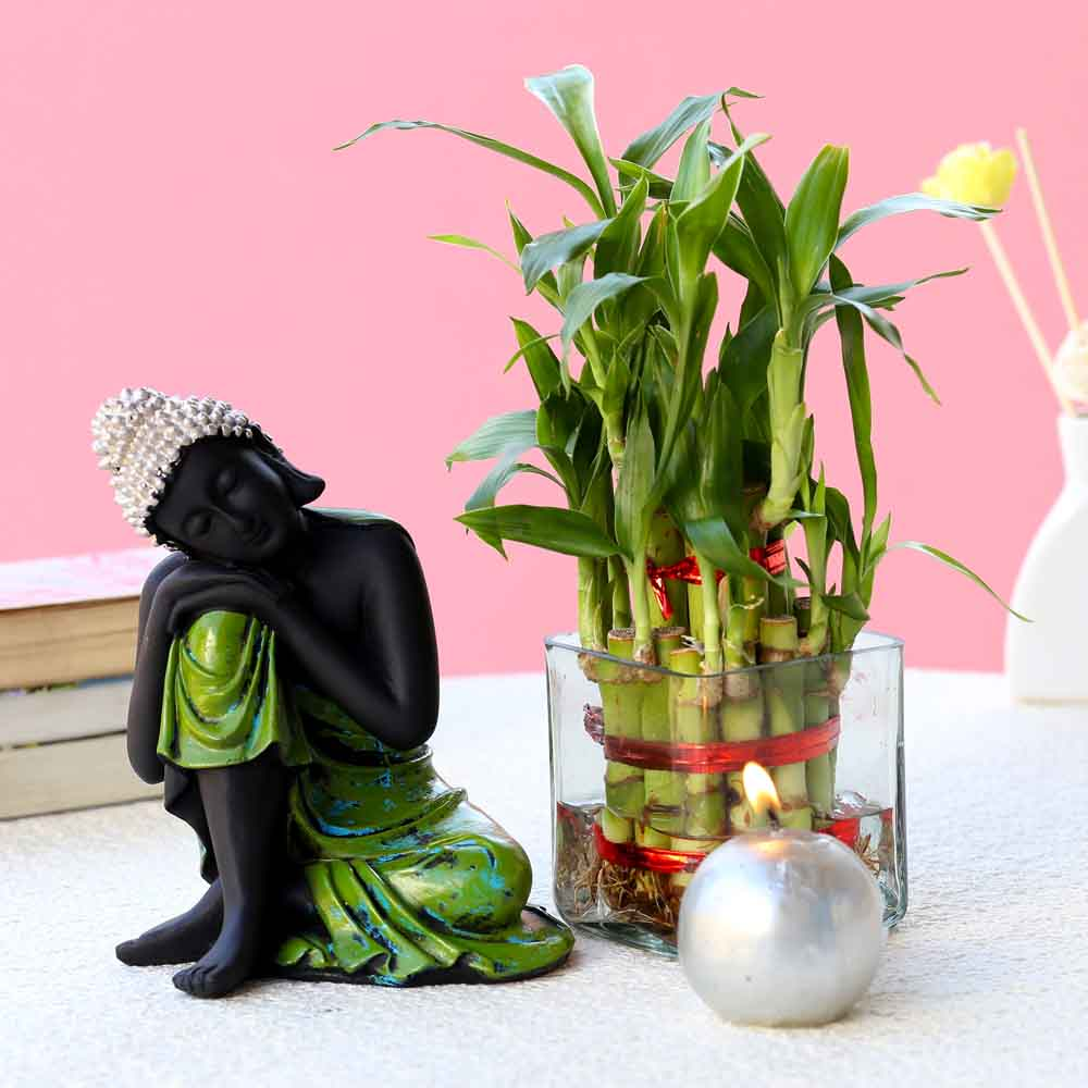 Relaxing Buddha & Bamboo Plant Combo