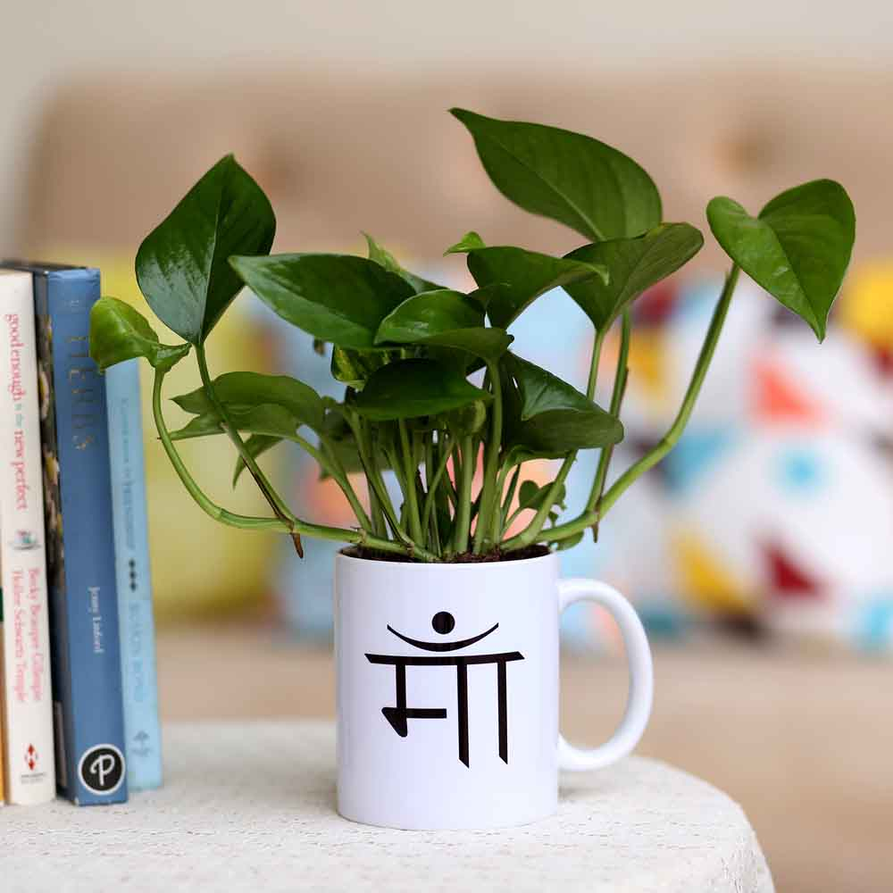 Money Plant In Maa Printed Mug