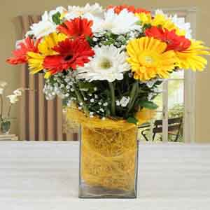 Fresh Flowers-Vase of Mixed Gerberas for Mom
