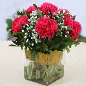 Fresh Flowers-Pink Carnations in Vase For Mothers Day