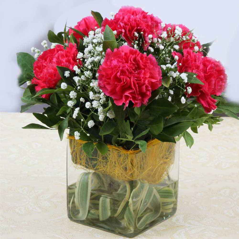 Pink Carnations in Vase For Mothers Day