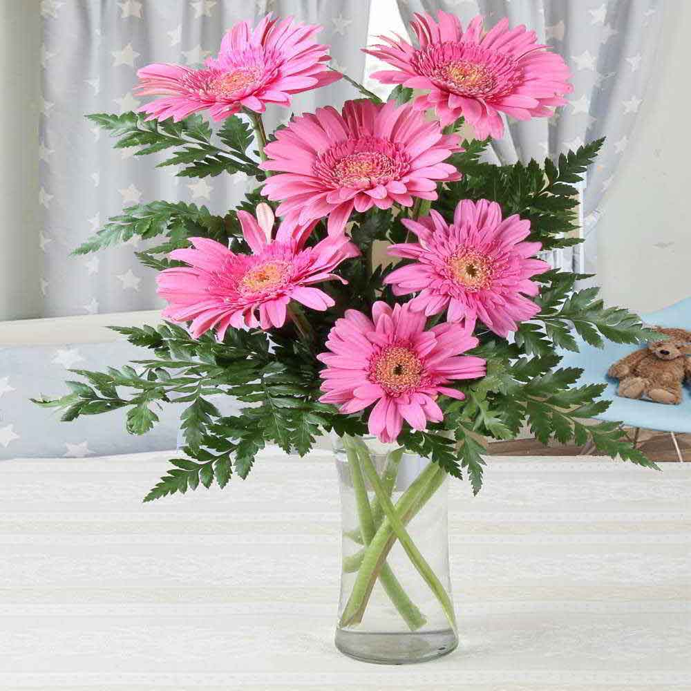 Mothers Day Best Vase of Six Pink Gerberas