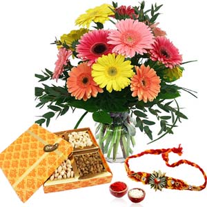 Dryfruits & Flowers-Colorful Gerberas and Assorted Dry Fruits with Rakhi