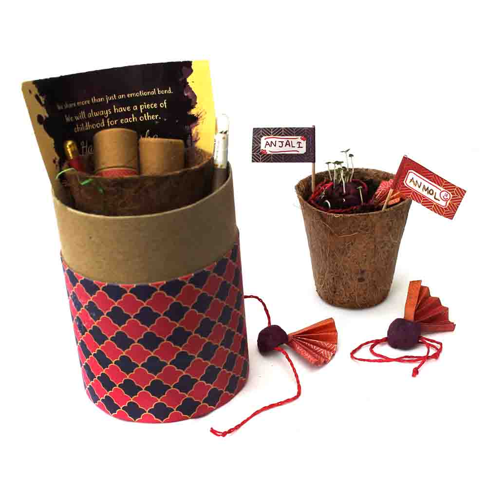 Plantable Rakhi for Brothers - Luxury Edition