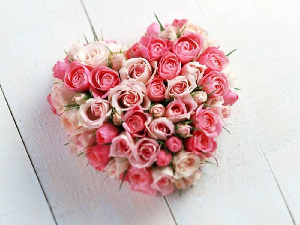 40 Pink Roses Heart Shape Arrangement